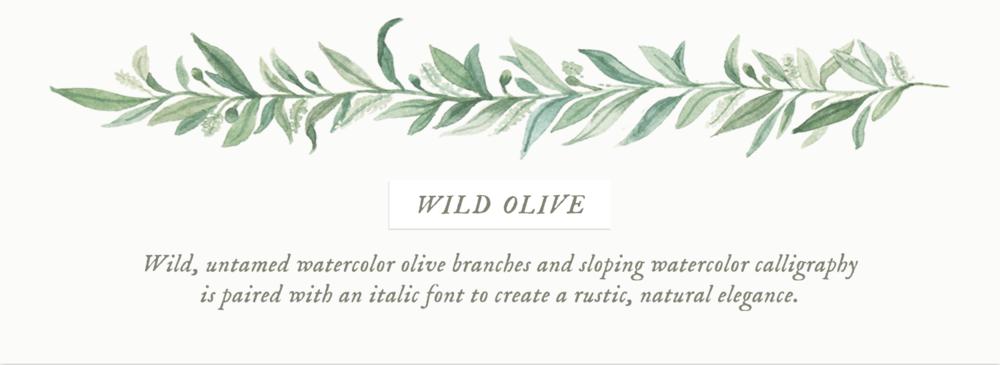 Wild Olive Emily Rose Ink