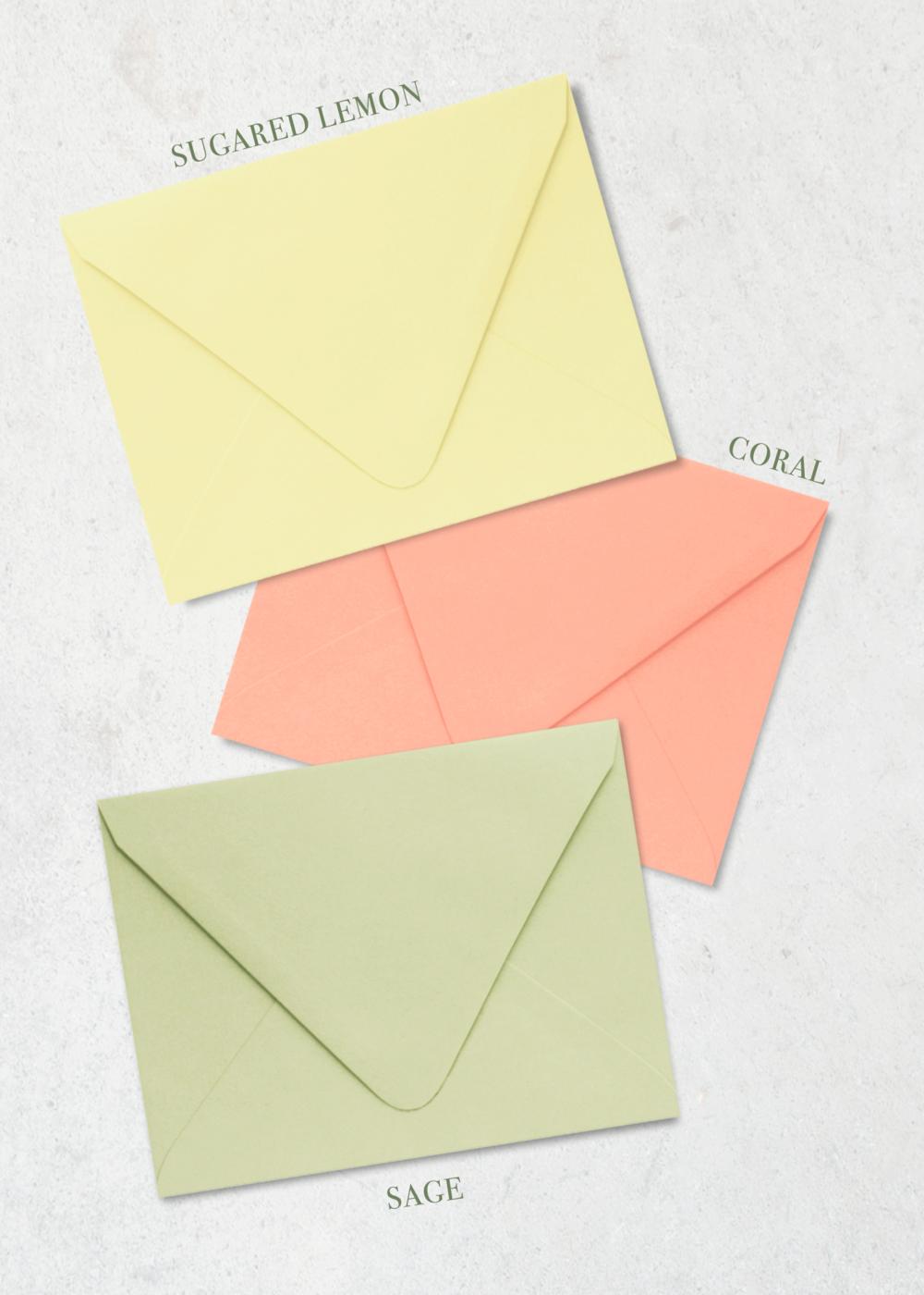 Color-Envelope-Bold-Blossom-PP.png