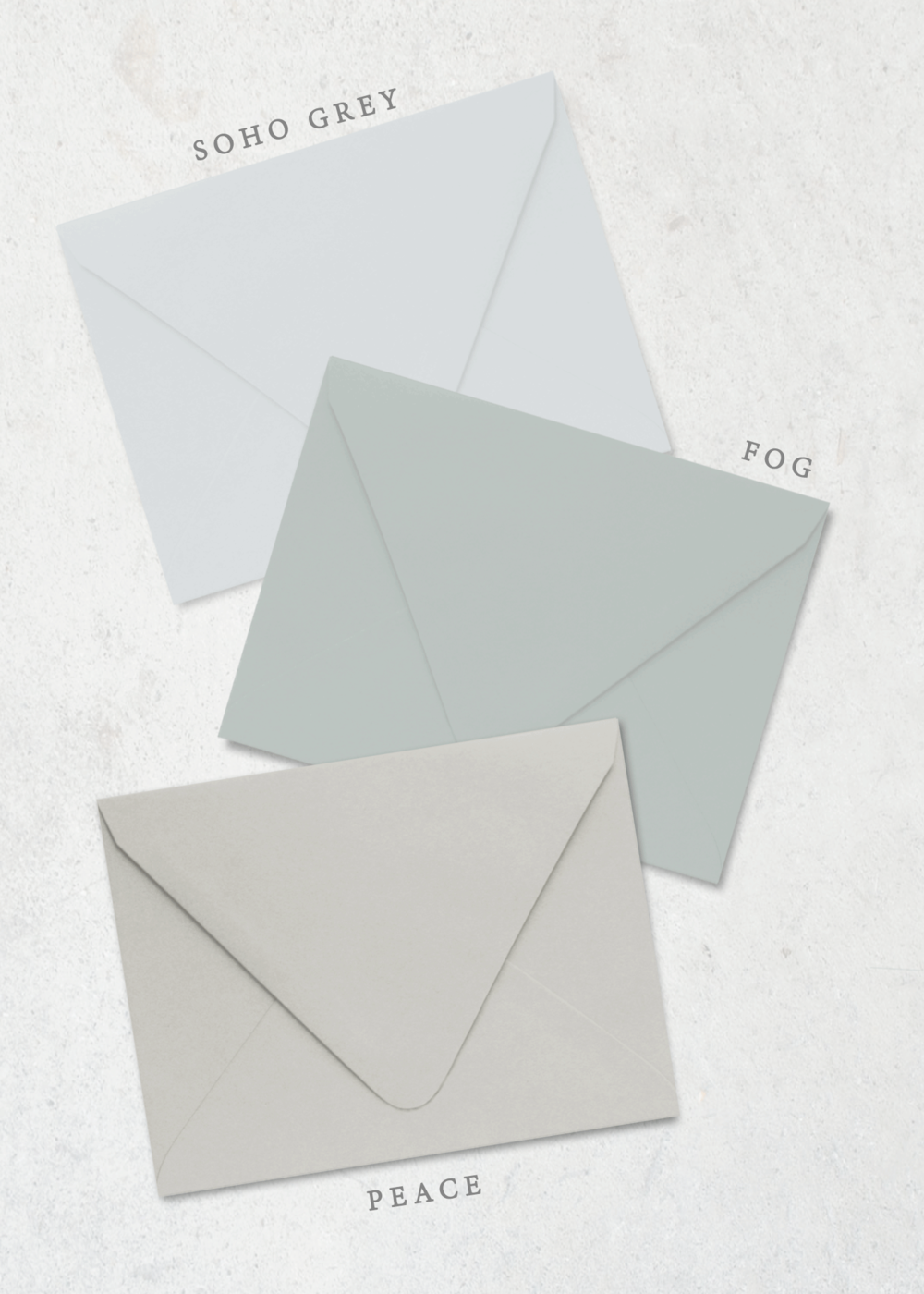 Color-Envelope-Organic-Laurel-PP.png