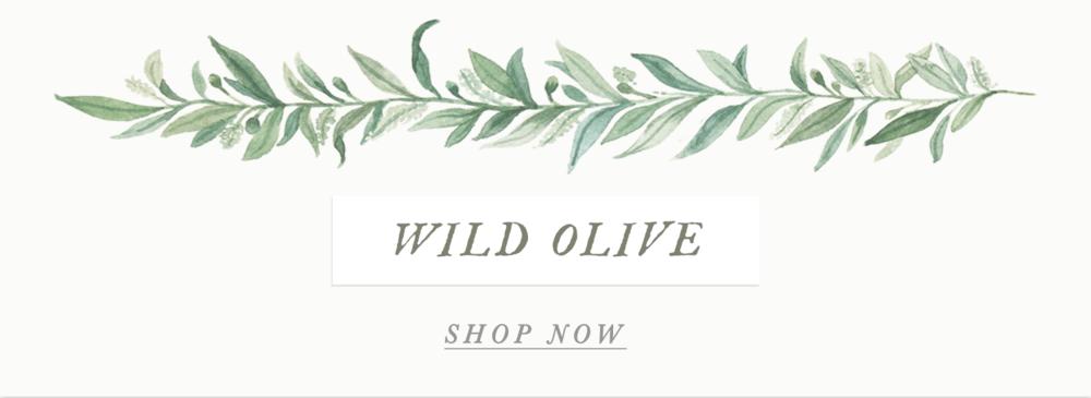 wild olive banner emily rose ink