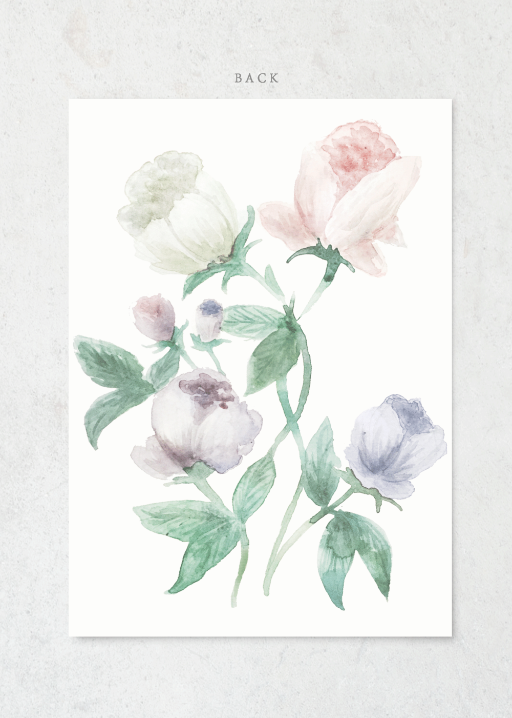 invitation-pastel-floral-back-pp.png