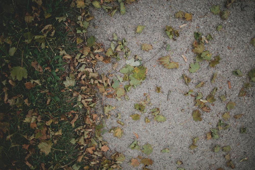 ZastrowFamilyBlog_0052.jpg
