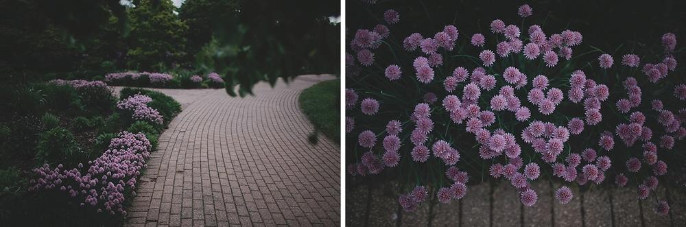Olbrich Gardens Wedding_0002.jpg