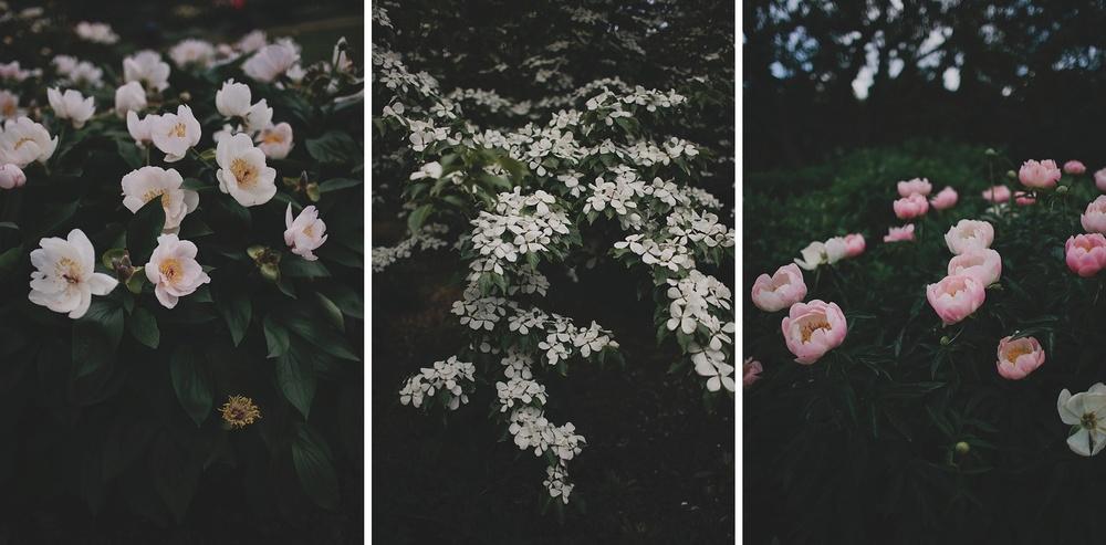 Olbrich Gardens Wedding_0003.jpg