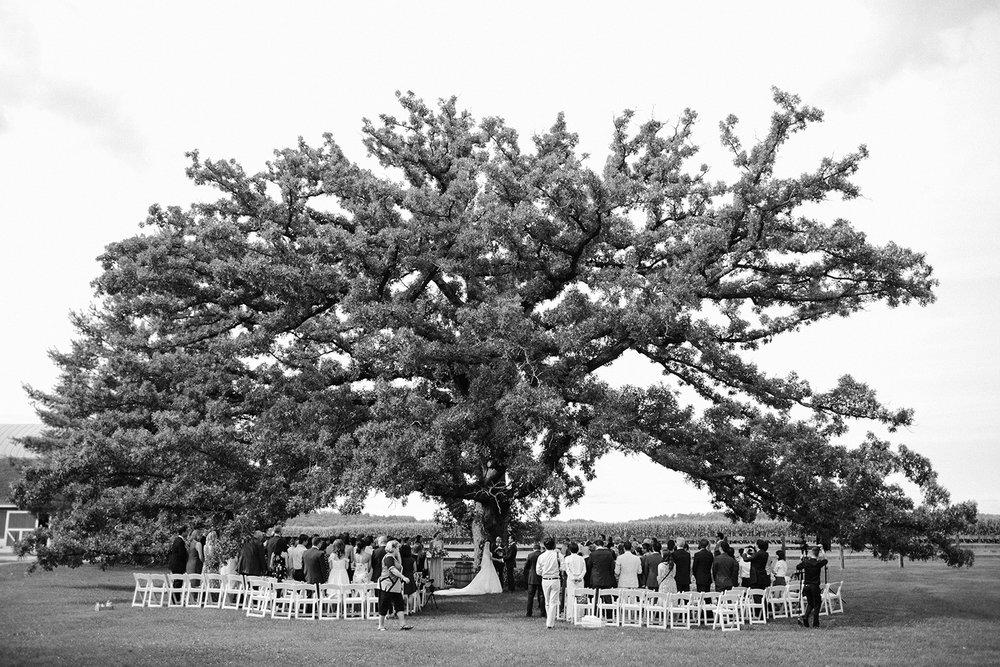 Sugarland Barn Wedding 056.jpg