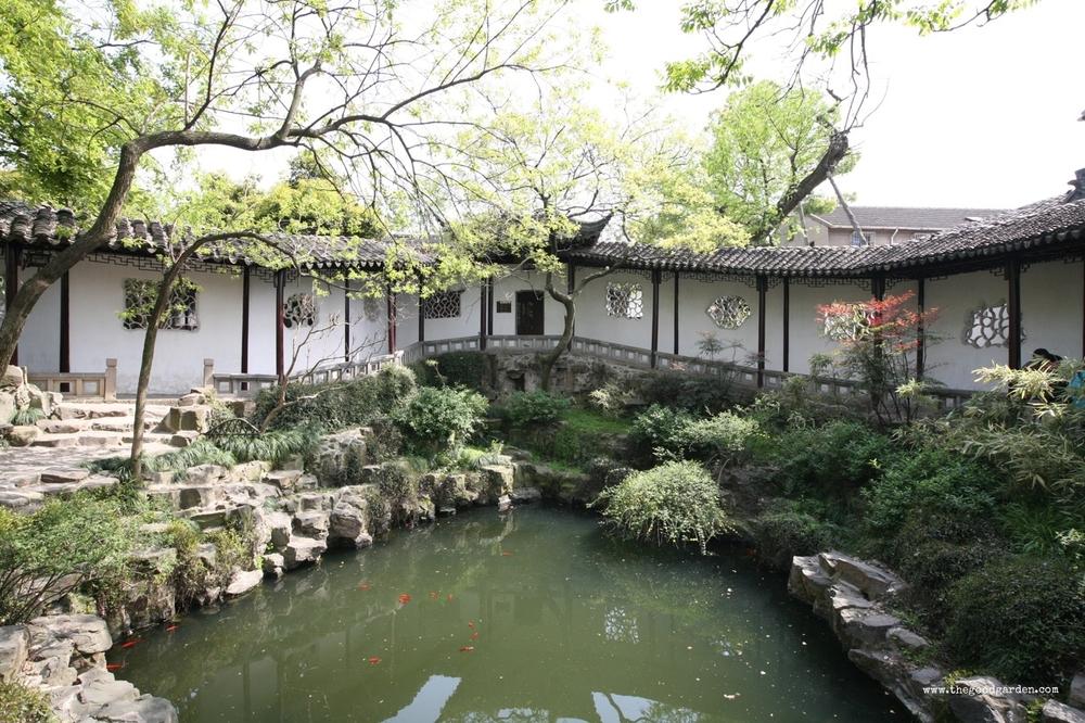 thegoodgarden|surgingwavegarden|suzhou|6051.jpg