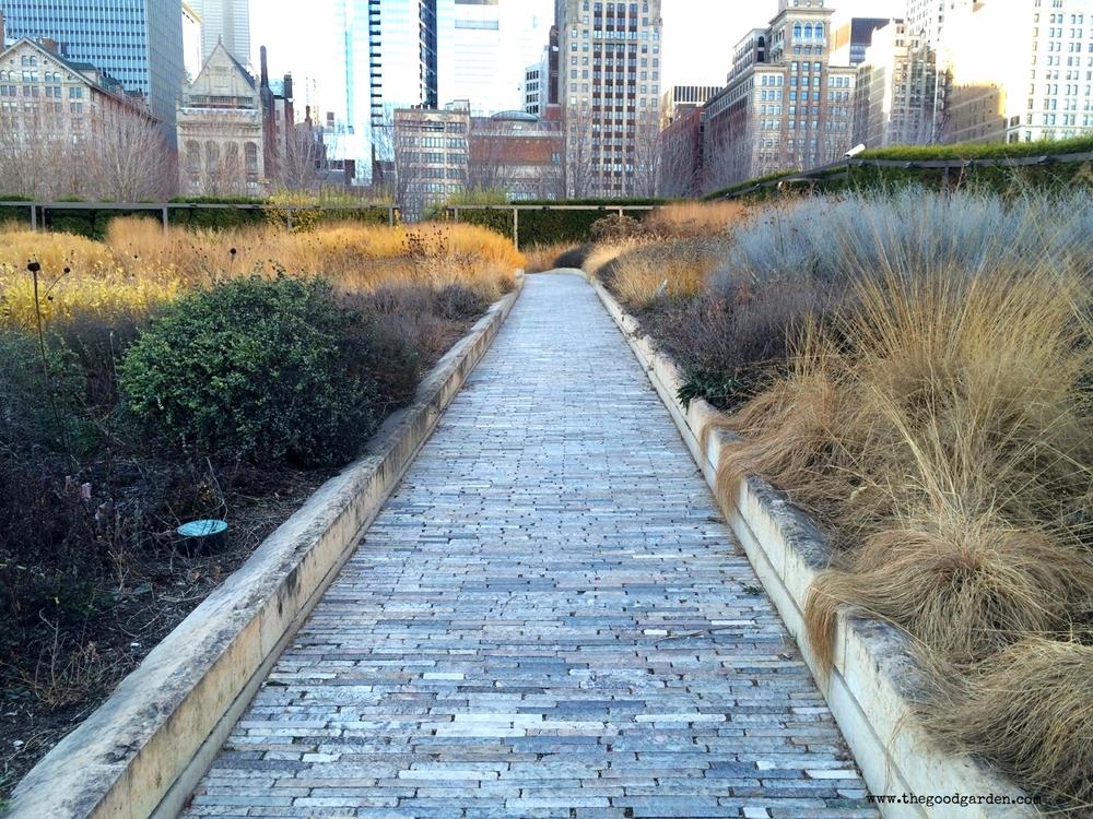 thegoodgarden|luriegarden|chicago|1504.jpg