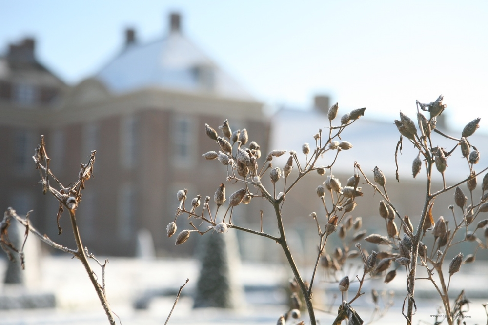 thegoodgarden|hetloopalace|winter|4655.jpg
