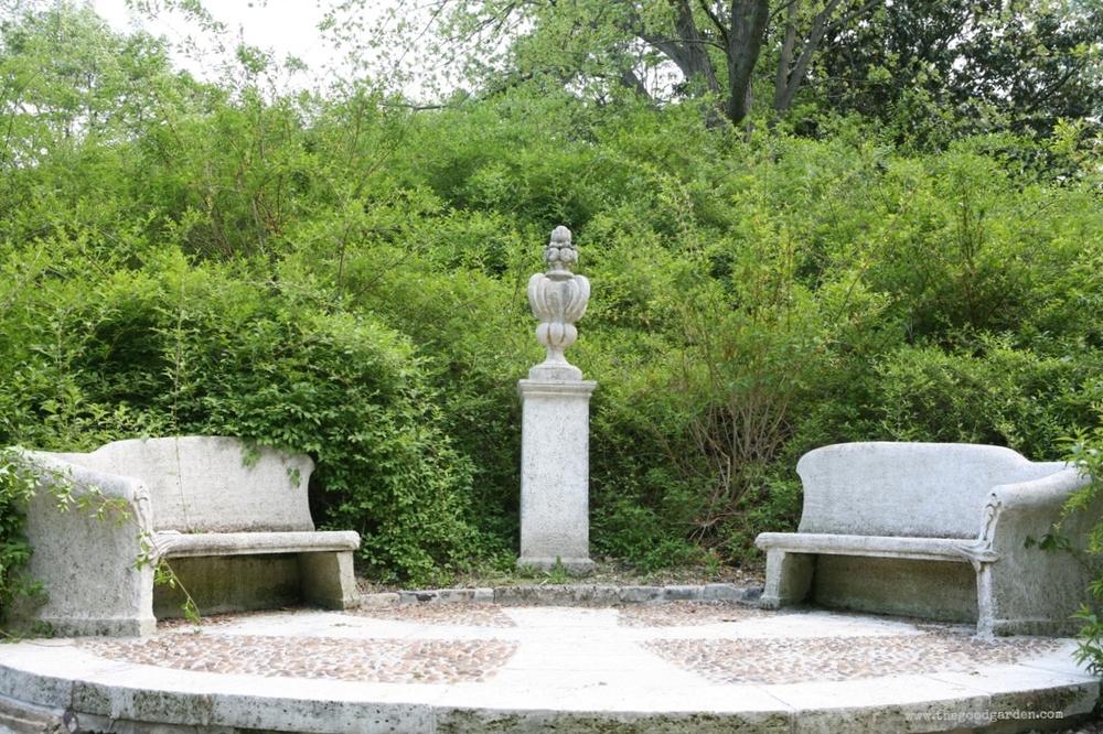 The forsythia dell at Dumbarton Oaks, Washington, DC.