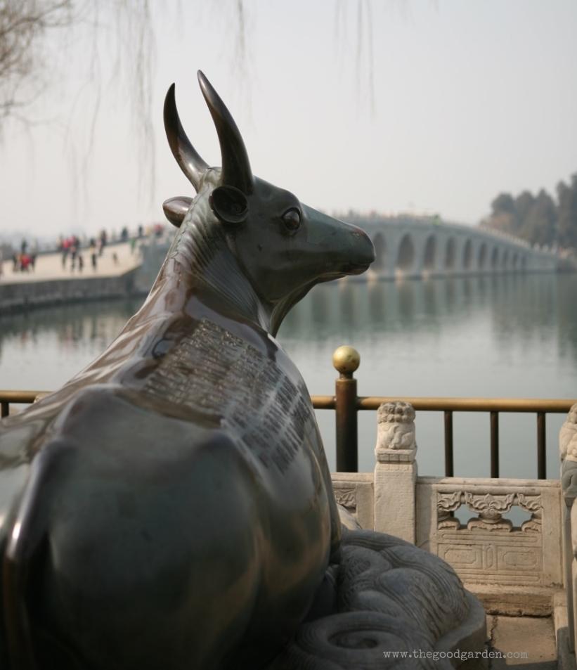 thegoodgarden|Beijing|summerpalace|2106.jpg