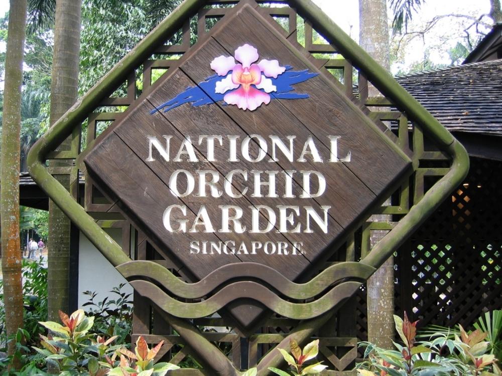thegoodgarden|singapore|botanic|1397.jpg