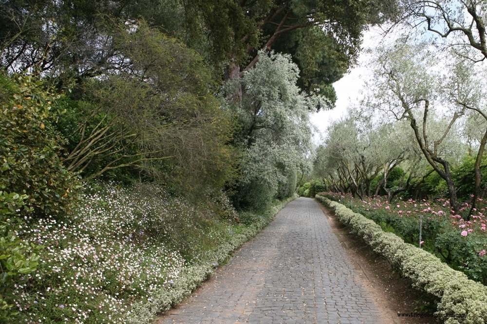 thegoodgarden|landriana|russellpage|4281.jpg
