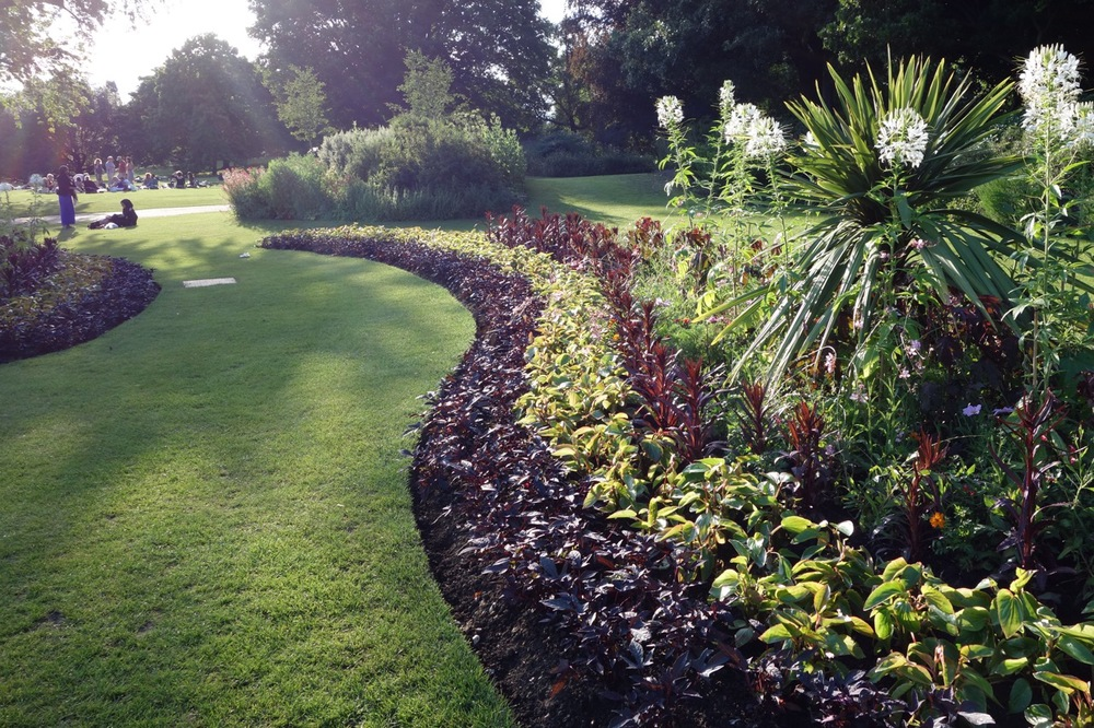 "This example of ""ribbons"" of annuals required the ability to propagate plants in large quantities. Hyde Park, London."
