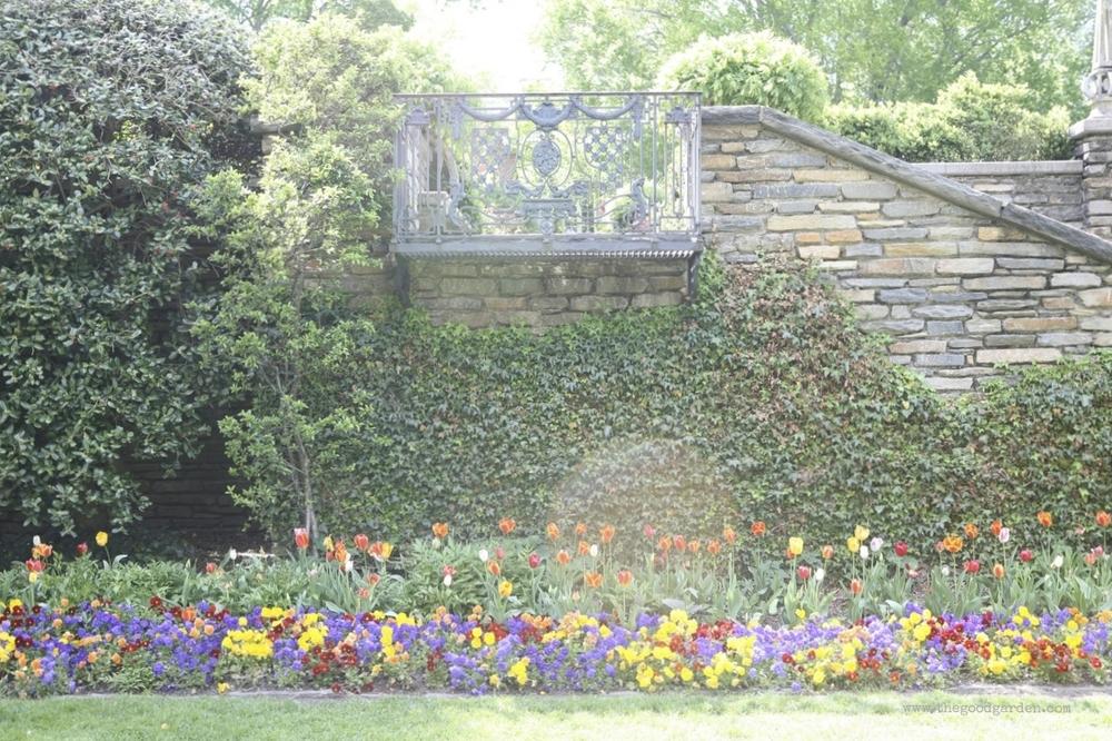 thegoodgarden|dumbartonoaks|beatrixfarrand|1754.jpg