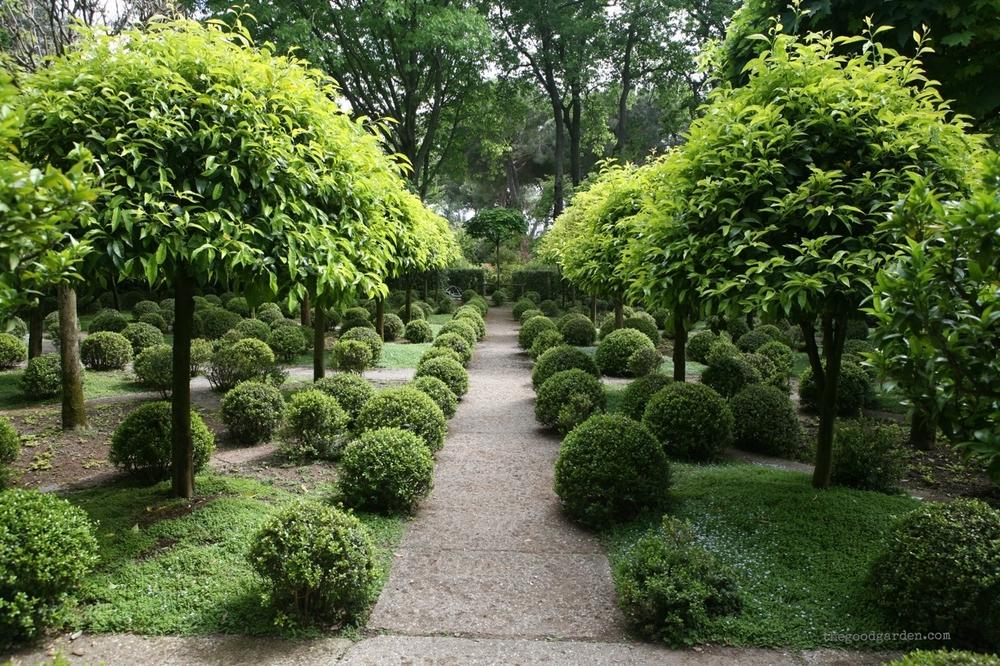 thegoodgarden|landriana|russellpage|4313.jpg