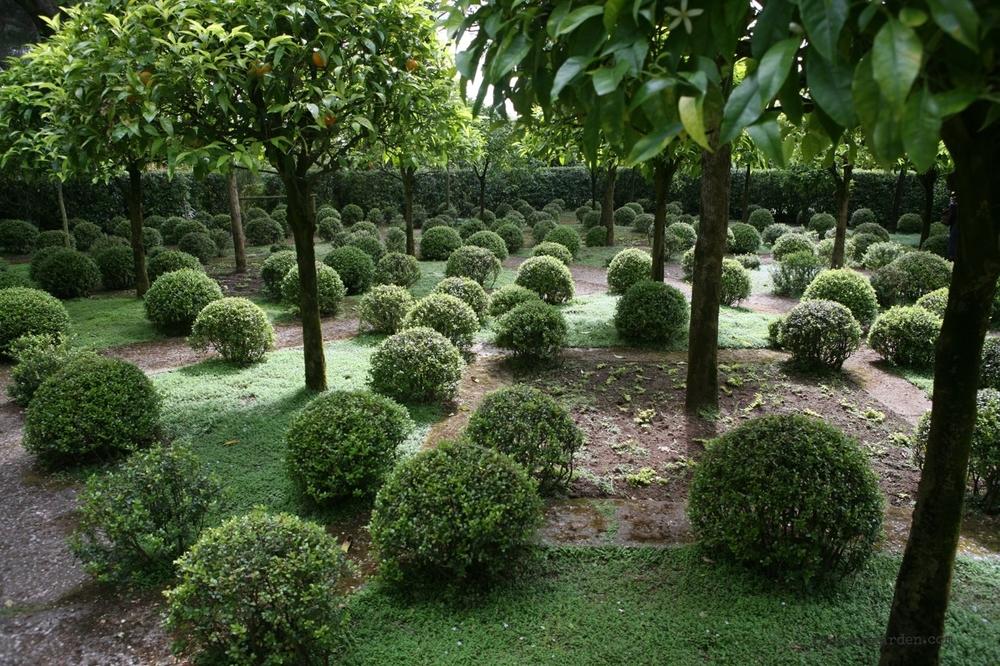 thegoodgarden|landriana|russellpage|4300.jpg