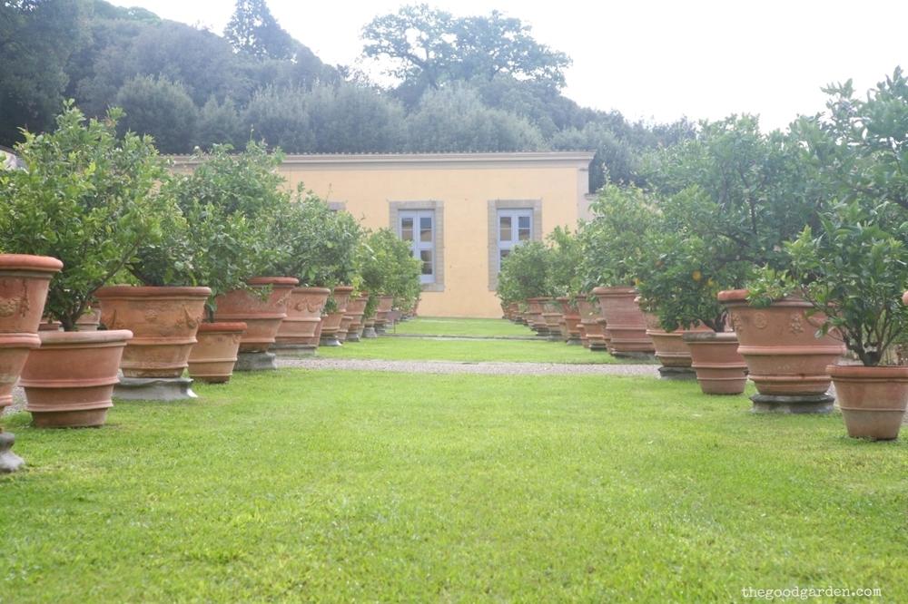 thegoodgarden|villa|diCastello|italy|0704.jpg