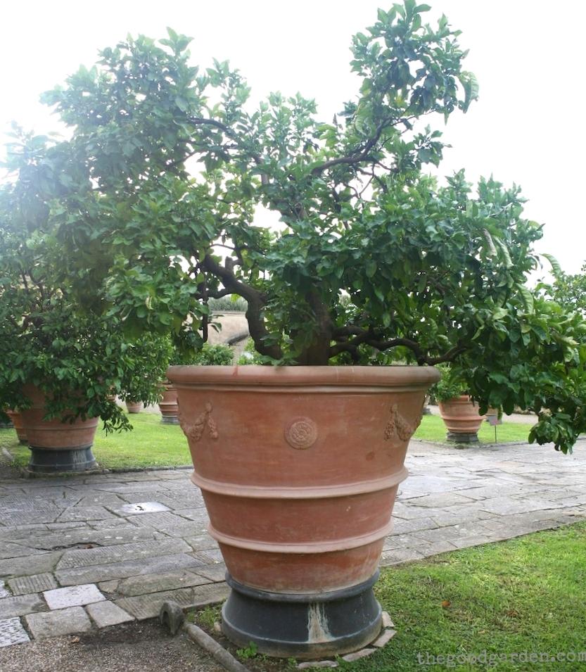 thegoodgarden|villa|diCastello|italy|0712.jpg