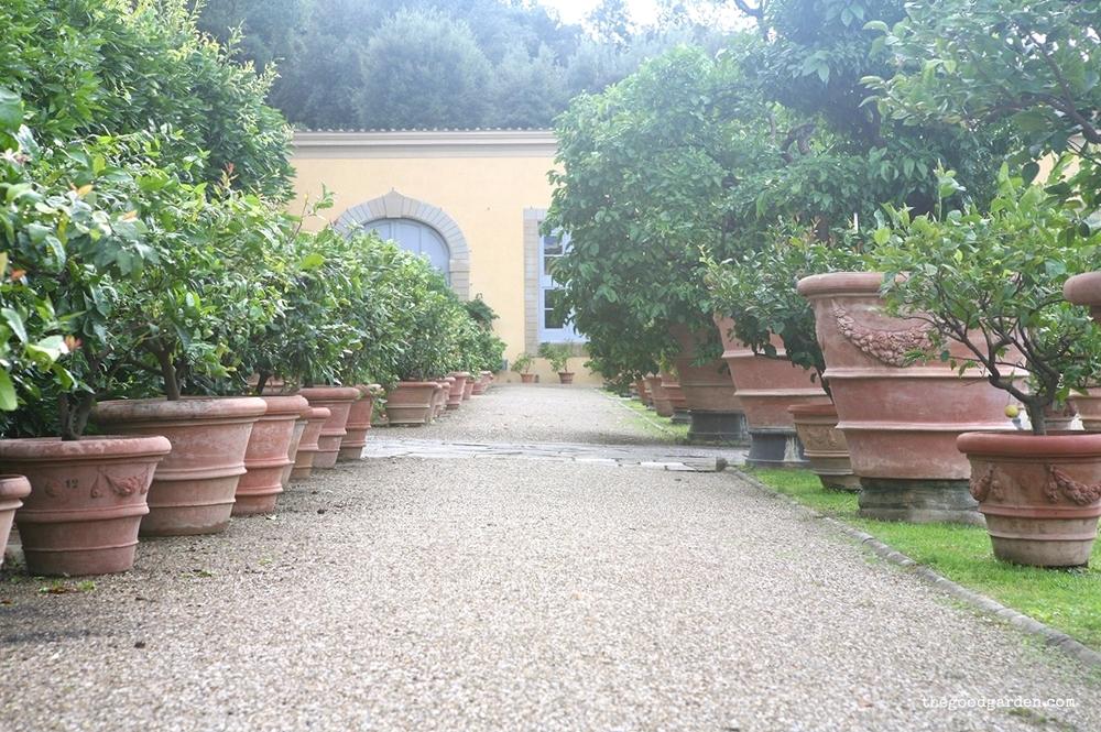 thegoodgarden|villa|diCastello|italy|0710.jpg
