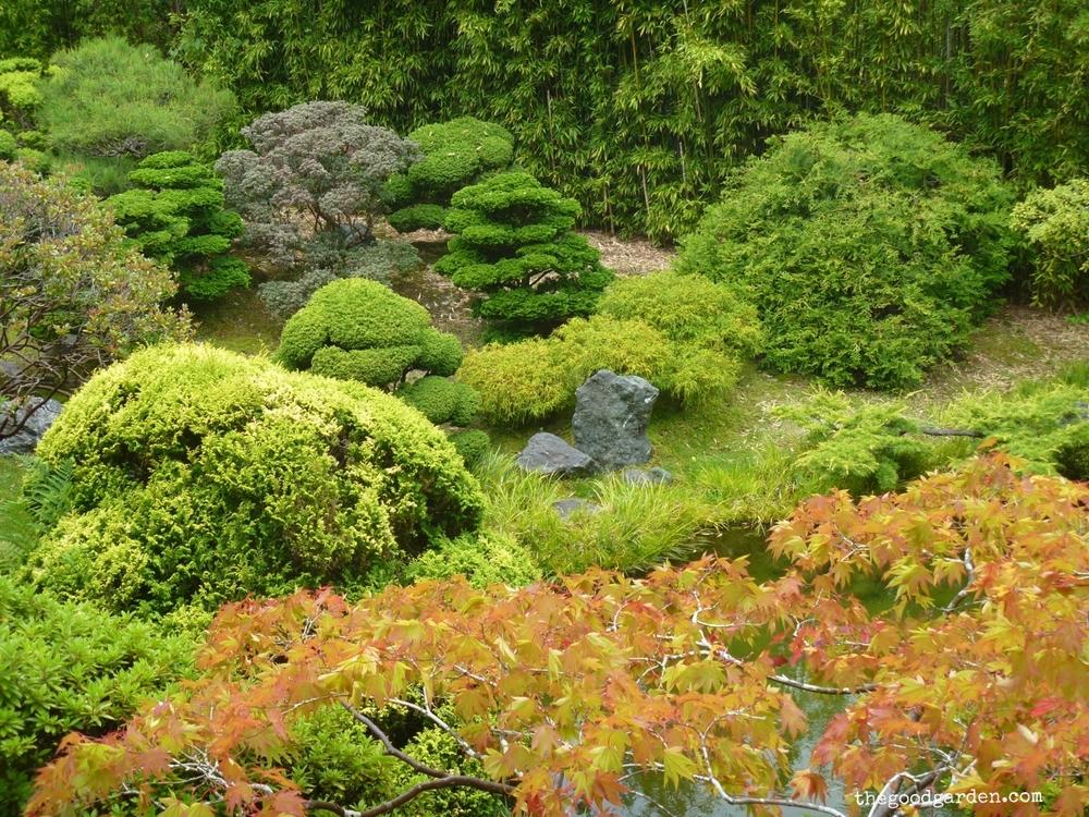 thegoodgarden|sanfrancisco|goldengatepark|20403.jpg