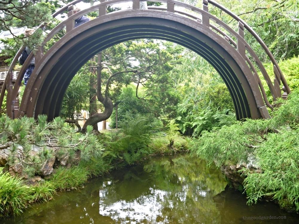 thegoodgarden|sanfrancisco|goldengatepark|20437.jpg