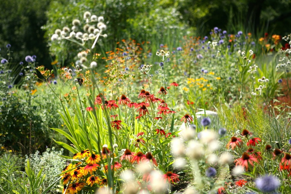 A mixed border at the Green Bay Botanical Garden.  Green Bay, Wisconsin.