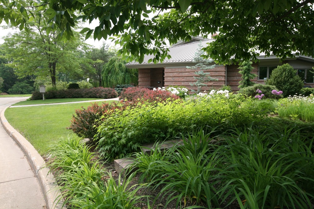 The front garden can be seen from down the street; it draws you in with a warm welcome.  A barberry hedge marks the beginning of the planted garden.