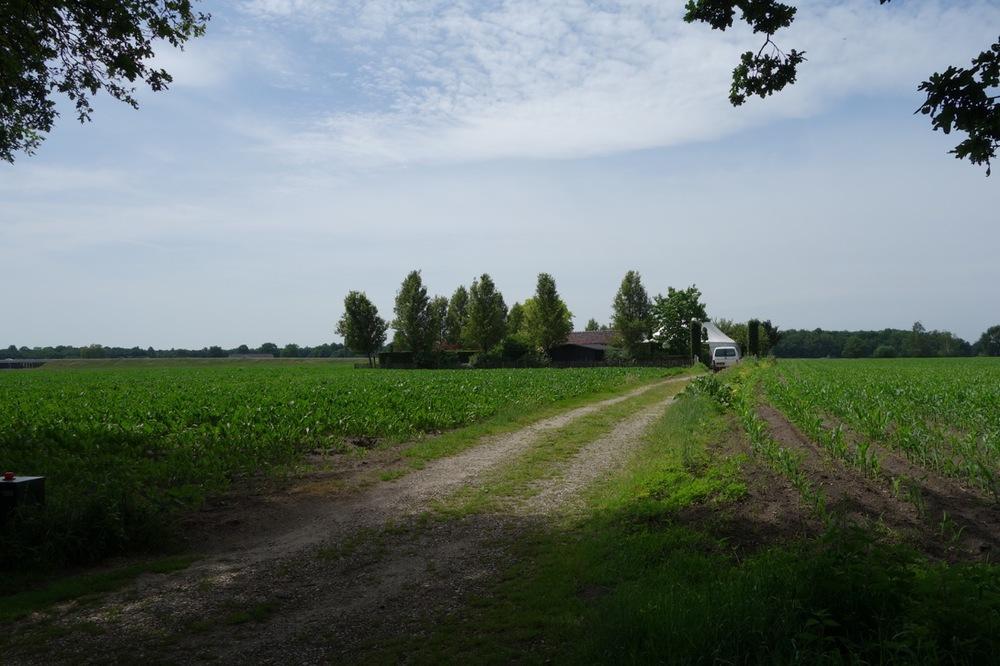 thegoodgarden|tuinzondernaam|netherlands|584.jpg