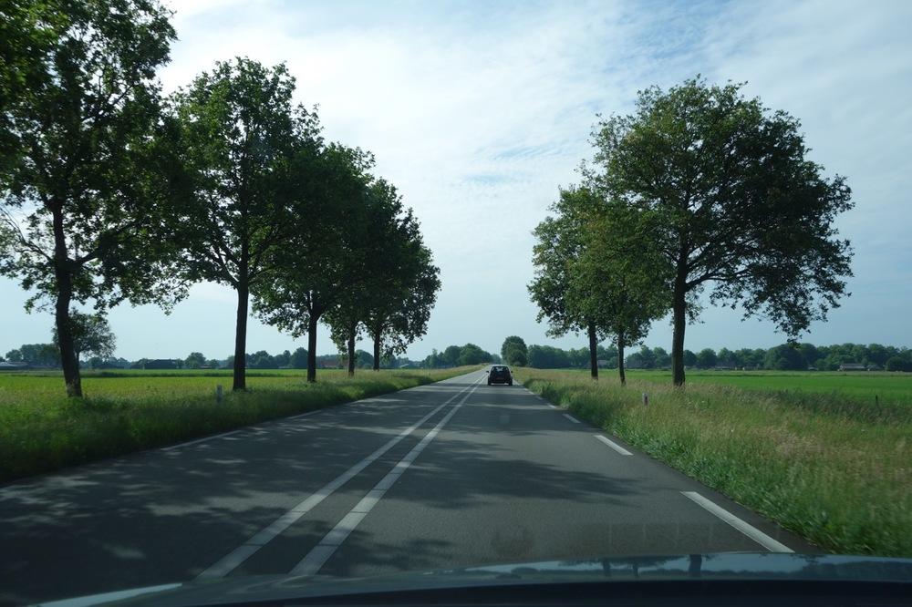 thegoodgarden|tuinzondernaam|netherlands|562.jpg