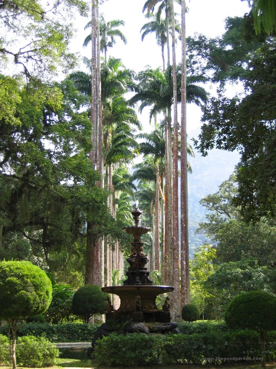 thegoodgarden|brazil|riodejaneiro|garden|932.jpg