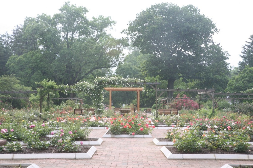 thegoodgarden|colonialpark|NJ|158.jpg