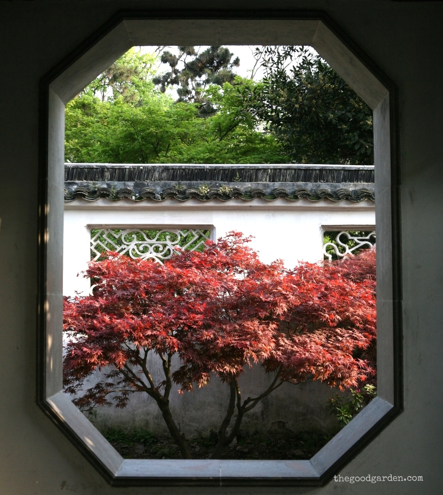 The Humble Administrator's Garden. Suzhou, China