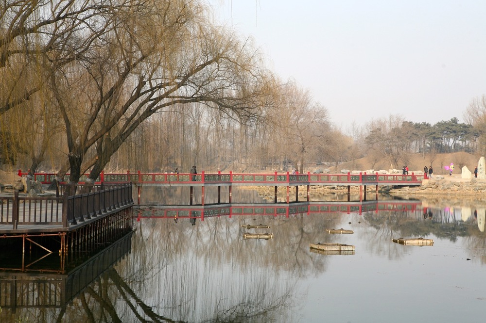 thegoodgarden|oldsummerpalace|china|davidcalle|2463.jpg