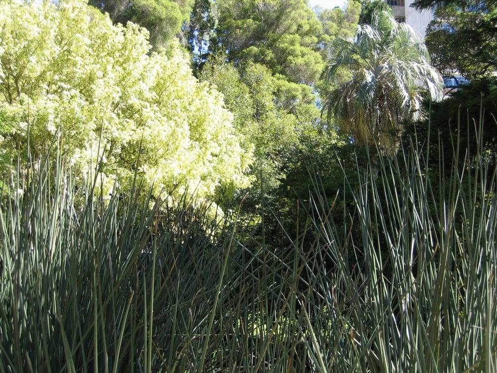 thegoodgarden|southafrica|capetown|0325.jpg