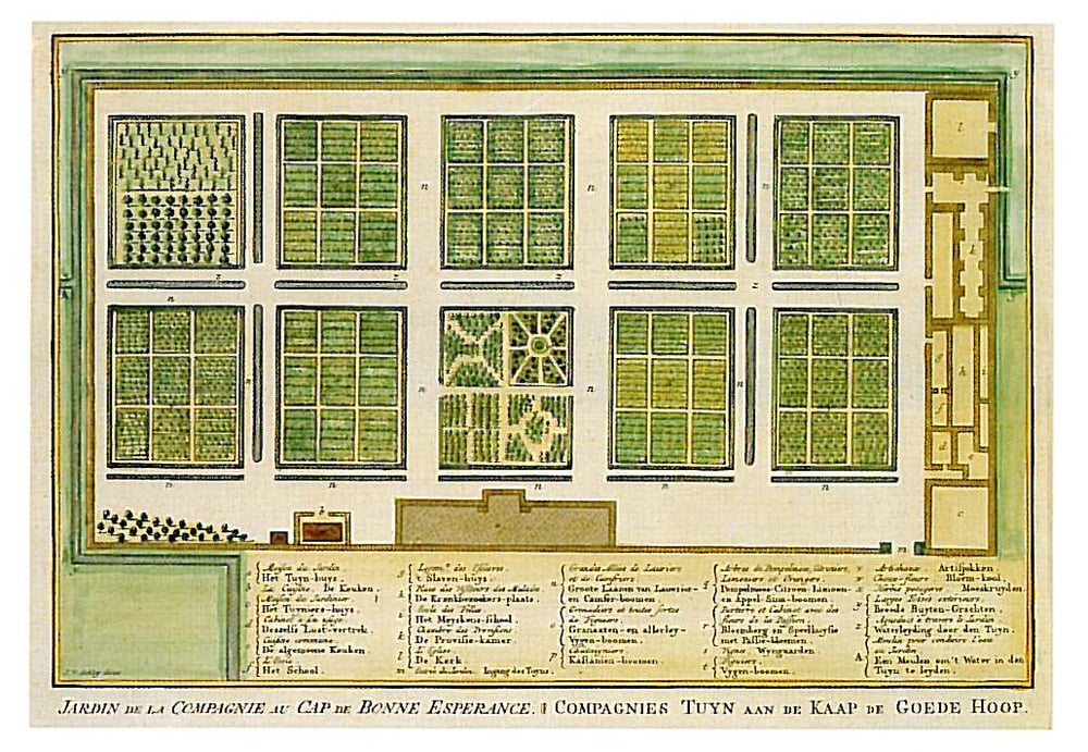 An early plan for the garden.  Note the formal layout.