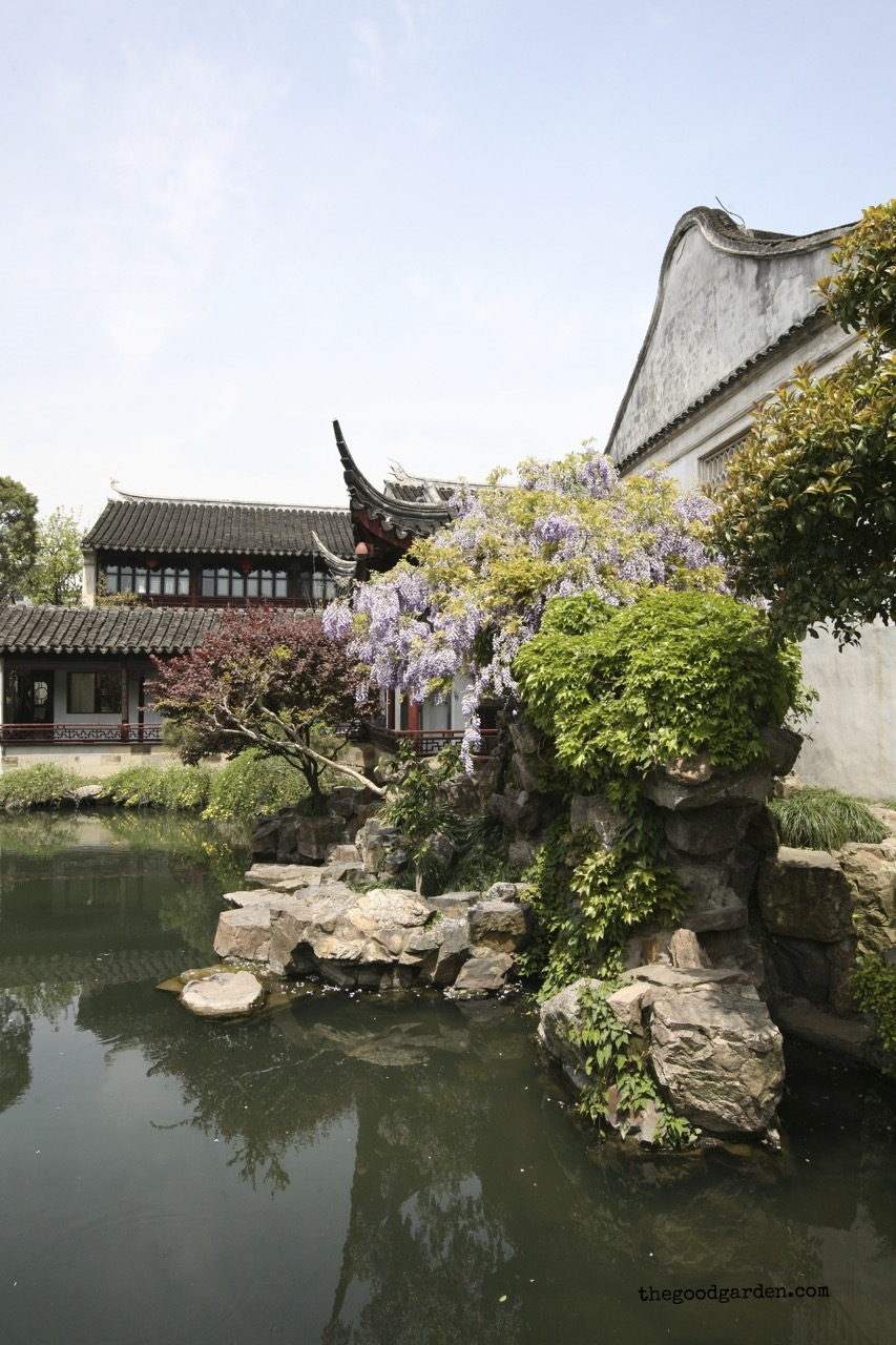 thegoodgarden|masterofnets|suzhou|davidcalle5876.jpg