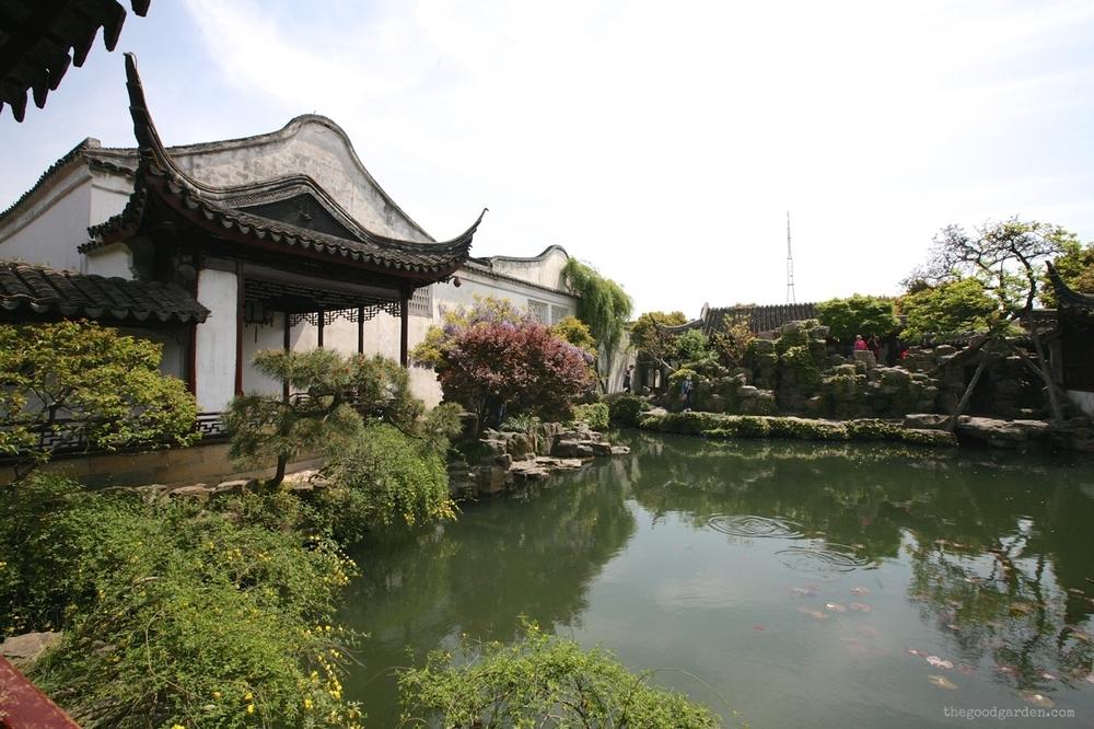 thegoodgarden|masterofnets|suzhou|davidcalle5909.jpg