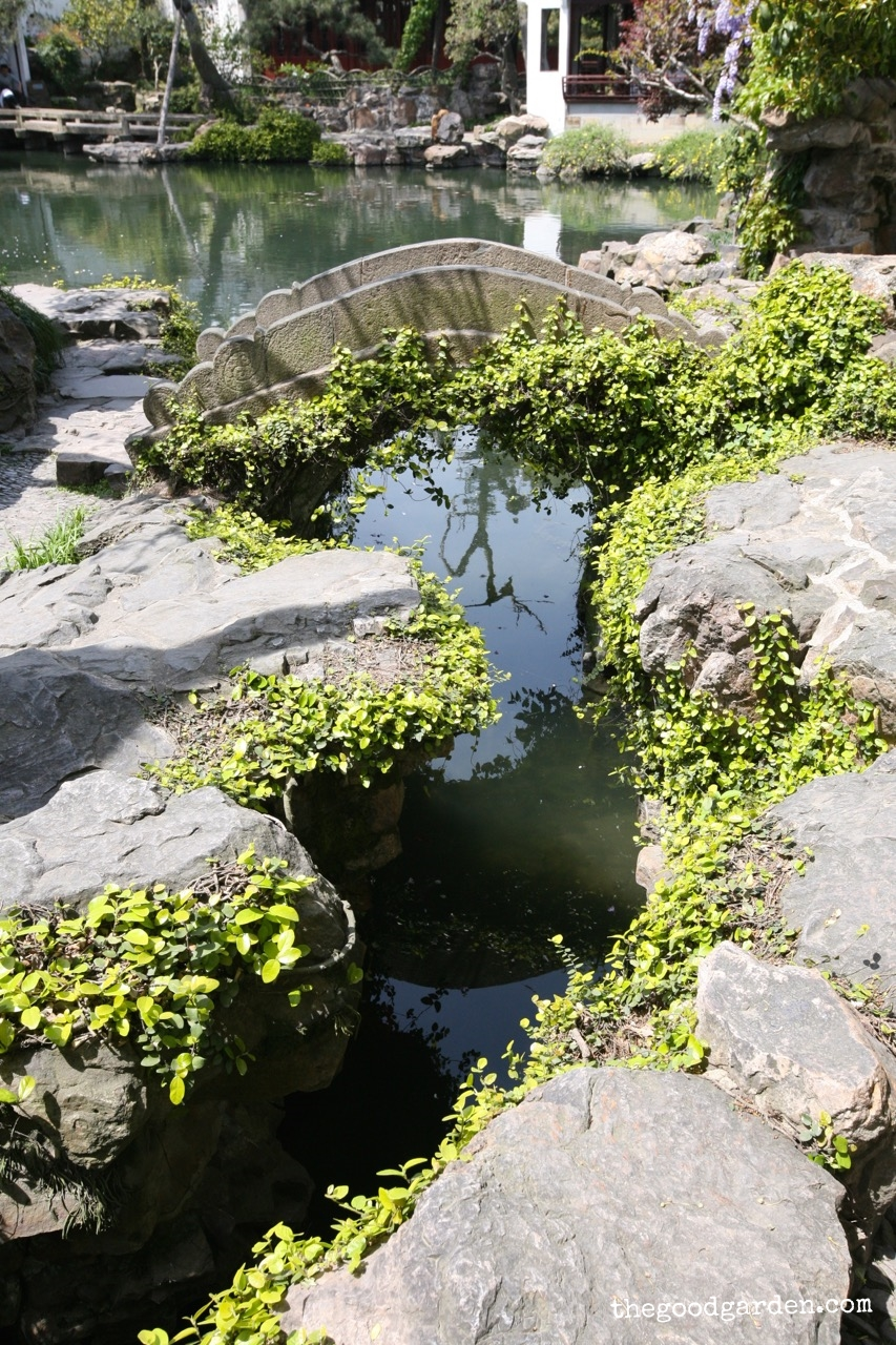 thegoodgarden|masterofnets|suzhou|davidcalle5963.jpg