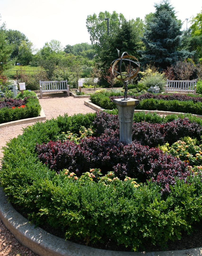 Blocks of annual flowering plants add summer interest to the knot garden.