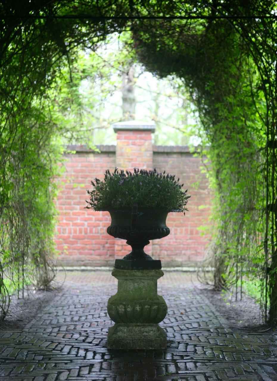 thegoodgarden|keukenhof|netherlands|2878.jpg