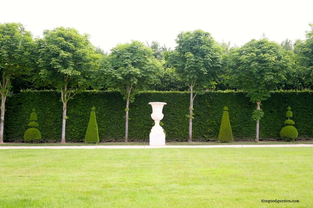 thegoodgarden|ornament|davidcalle|7854.jpg
