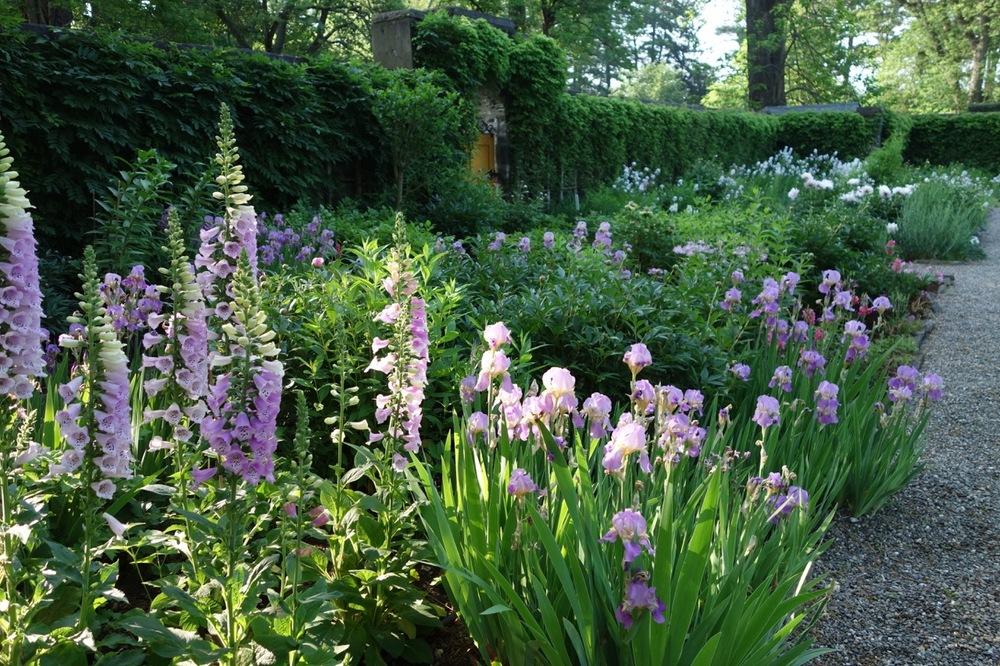 thegoodgarden|davidcalle|Bellefield|Farrand|02801.jpg