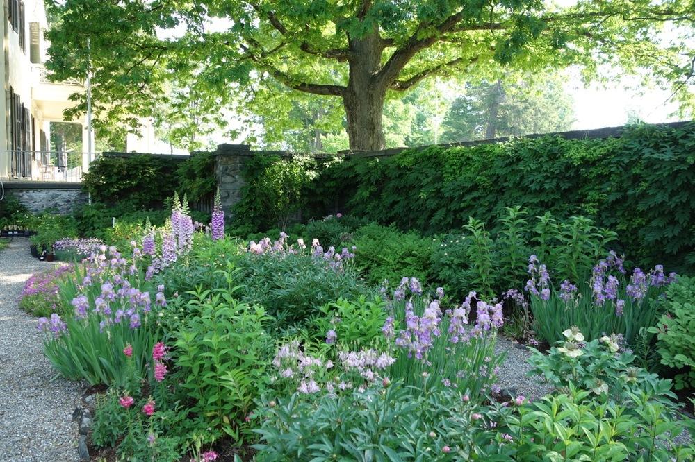 thegoodgarden|davidcalle|Bellefield|Farrand|02865.jpg
