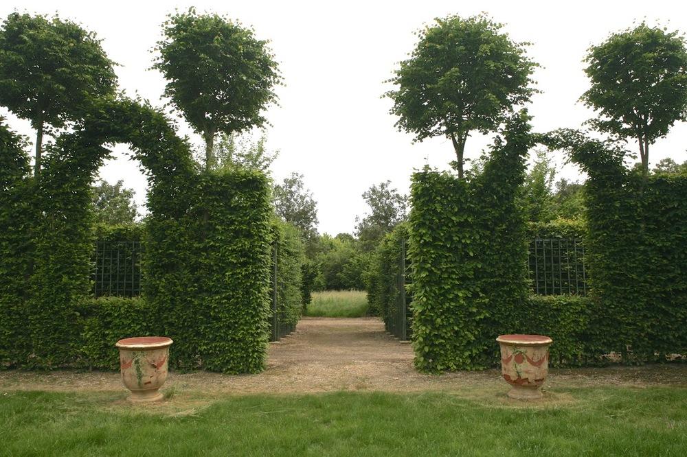 thegoodgarden|Versailles|formal|8556.jpg