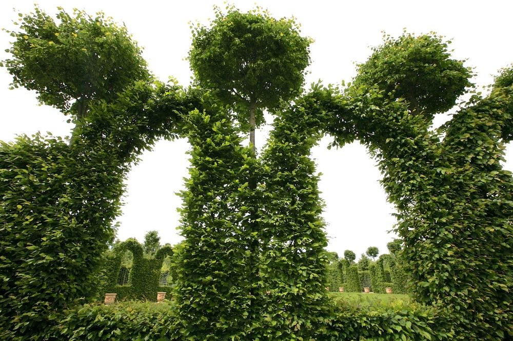 thegoodgarden|Versailles|formal|8567.jpg