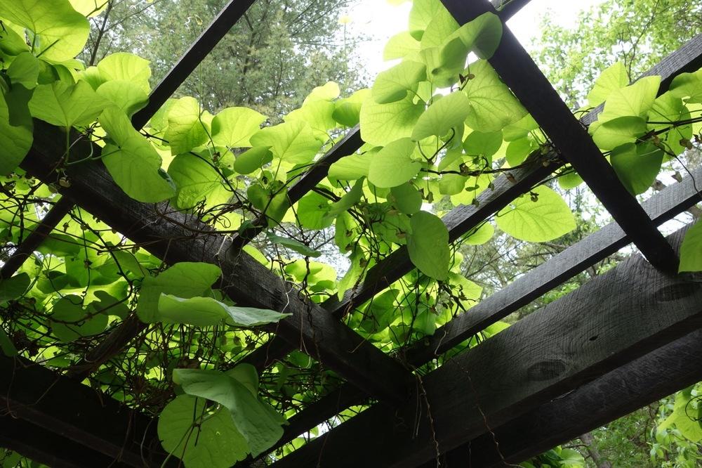 thegoodgarden|davidcalle|manitoga|02664.jpg
