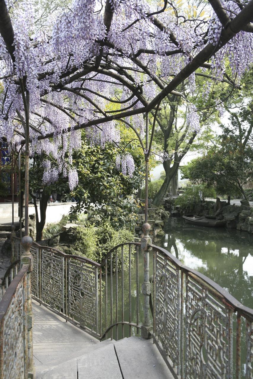 thegoodgarden|Suzhou|humbleadministratorsgarden|5133.jpg