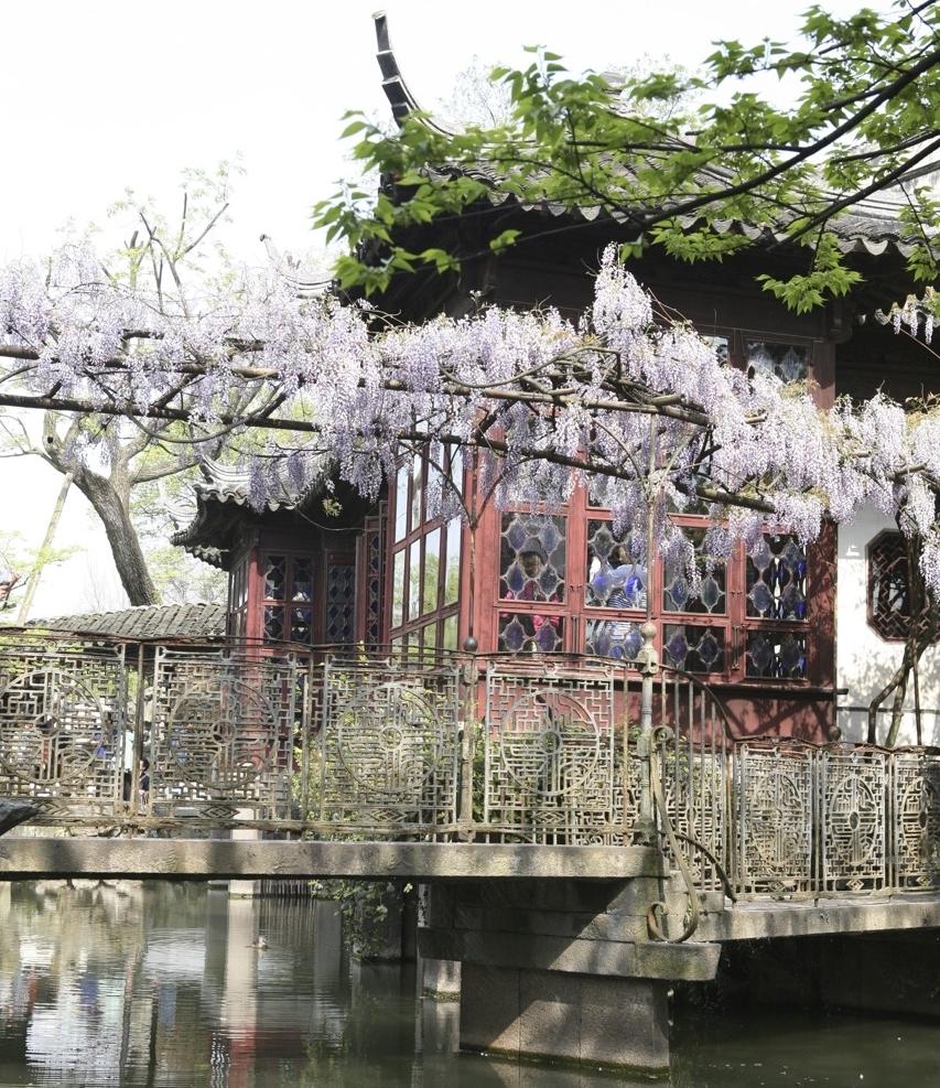 thegoodgarden|Suzhou|humbleadministratorsgarden|5075.jpg