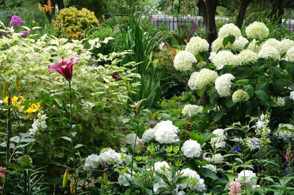 thegoodgarden|davidcalle|riversidepark|gardenpeople03492.jpg