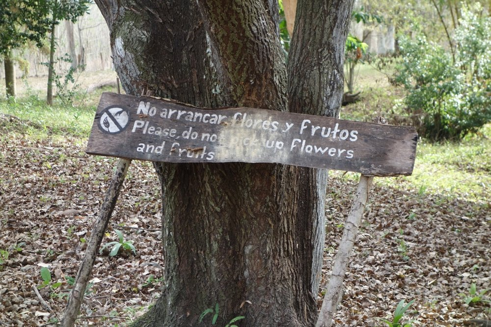 "A sign reads - ""Please don't pick up flowers and fruits.""  Visitors are carefully managed through guided group tours."